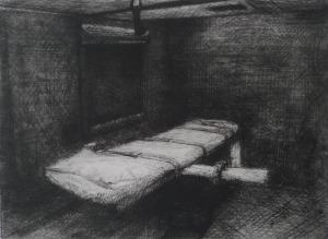 p14-...-robbioe cornelissen-de executiekamer-2013